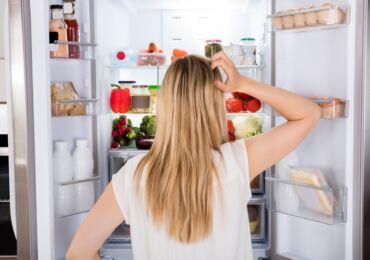 Где в холодильнике холоднее