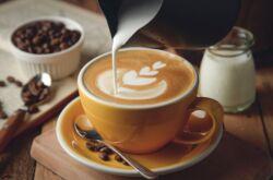 Какое молоко лучше для капучино в кофемашине
