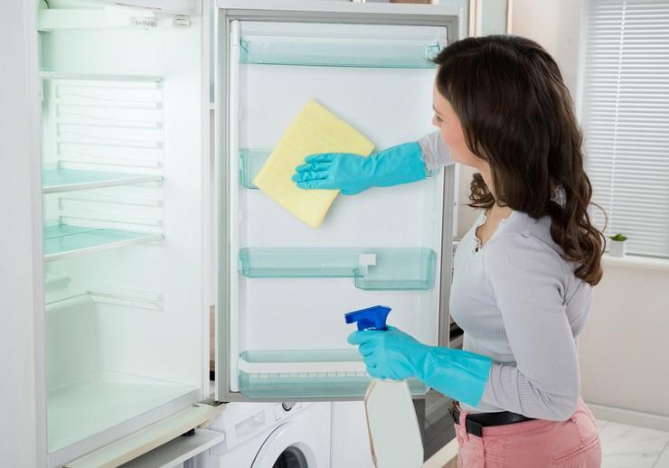 Как устранить чёрную плесень в холодильнике