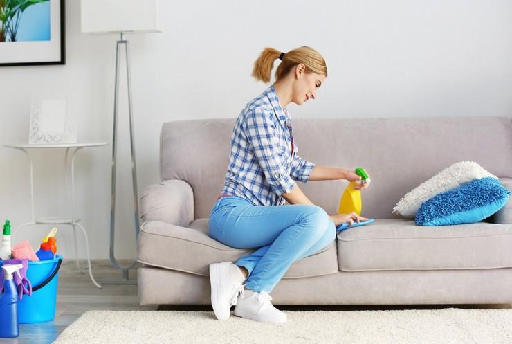 Картинки по запросу Как почистить диван в домашних условиях